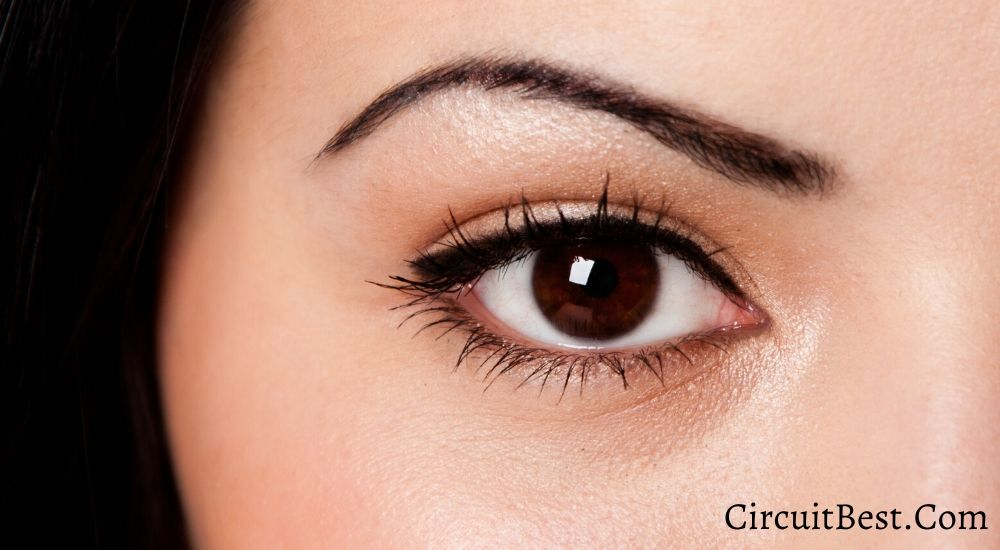 Top 10 simple ways to grow thick eyebrows naturally - Health